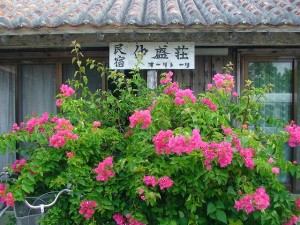 竹富島 仲盛荘
