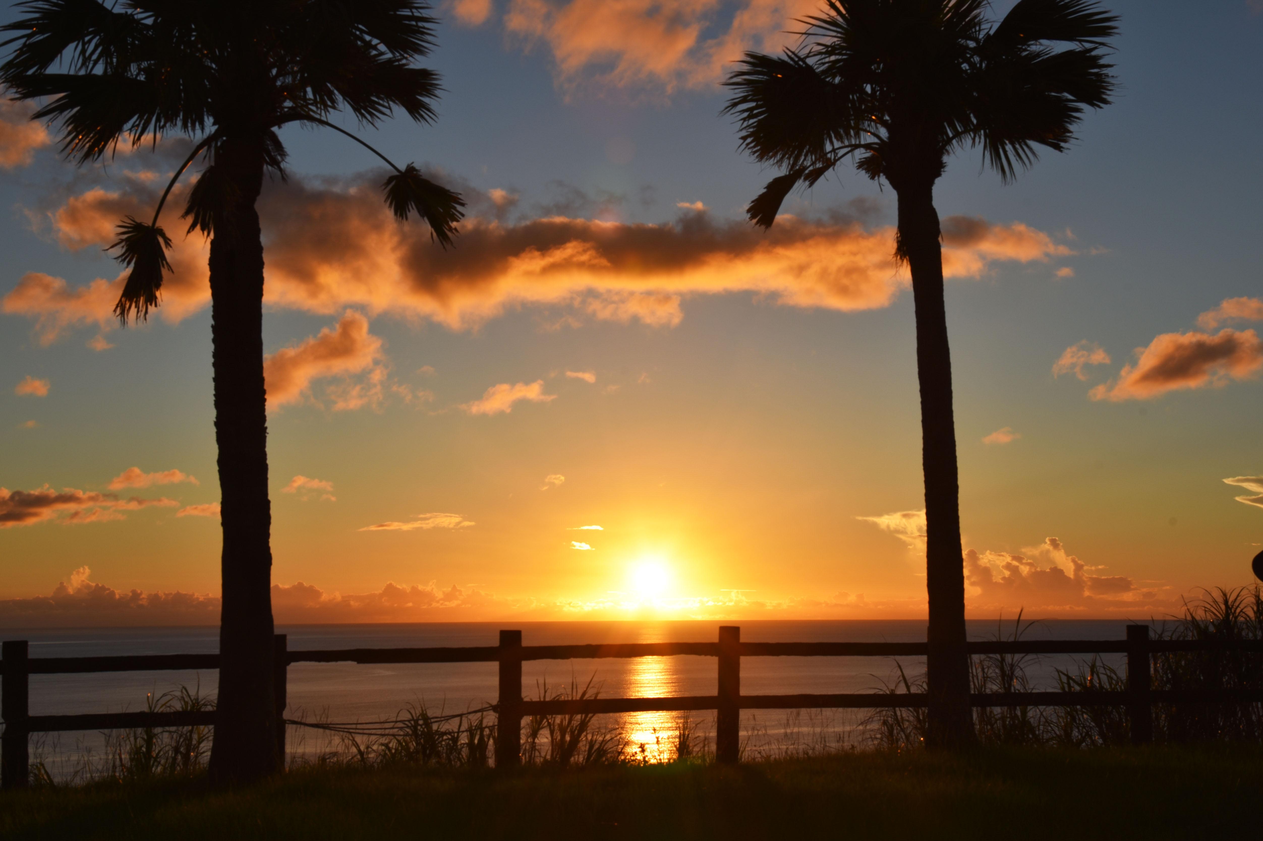 奄美大島旅行,ドミトリー 涼風さんにお世話になりました