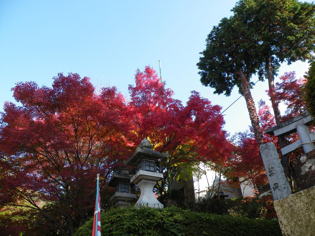 箕面 西江寺の紅葉